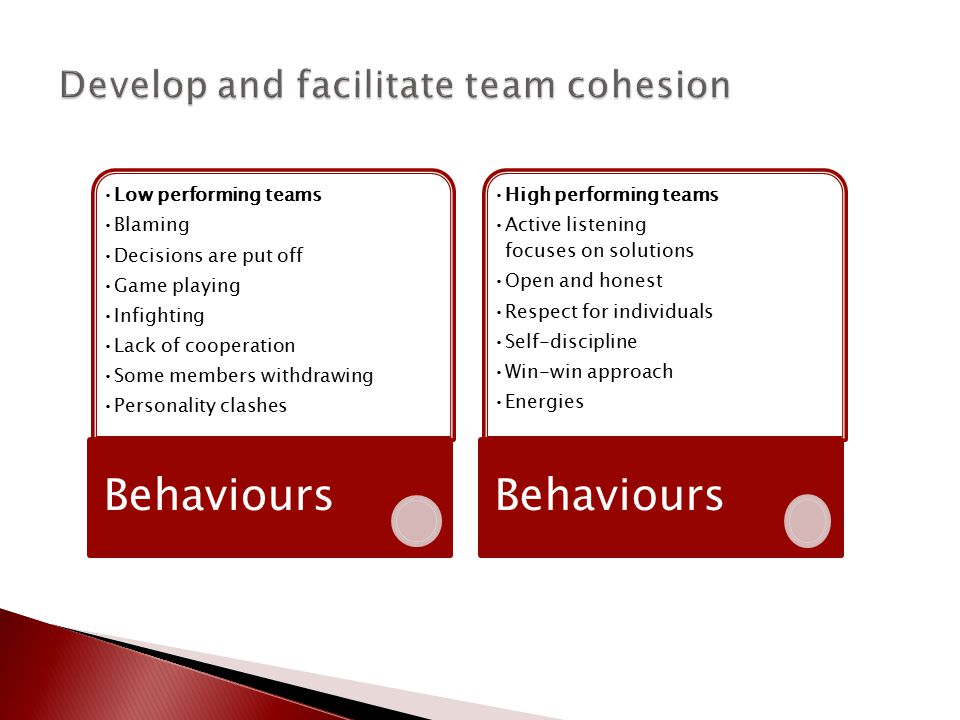 Low performing teams Blaming Decisions are put off Game playing Infighting Lack of cooperation Some members withdrawing Personality clashes Behaviours