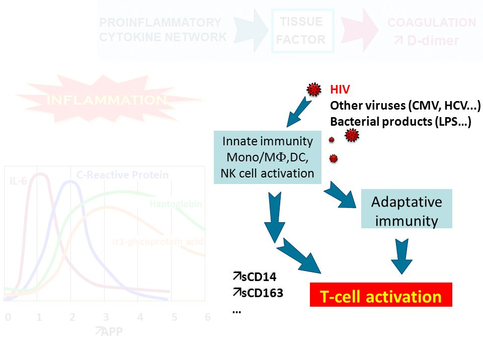 Association of soluble CD163 with arterial inflammation Hypothesis: Arterial inflammation -> HIV + pts compared with non-HIV FRS-matched controls -Correlated to mono/Mф activation (CD163) 81 participants.