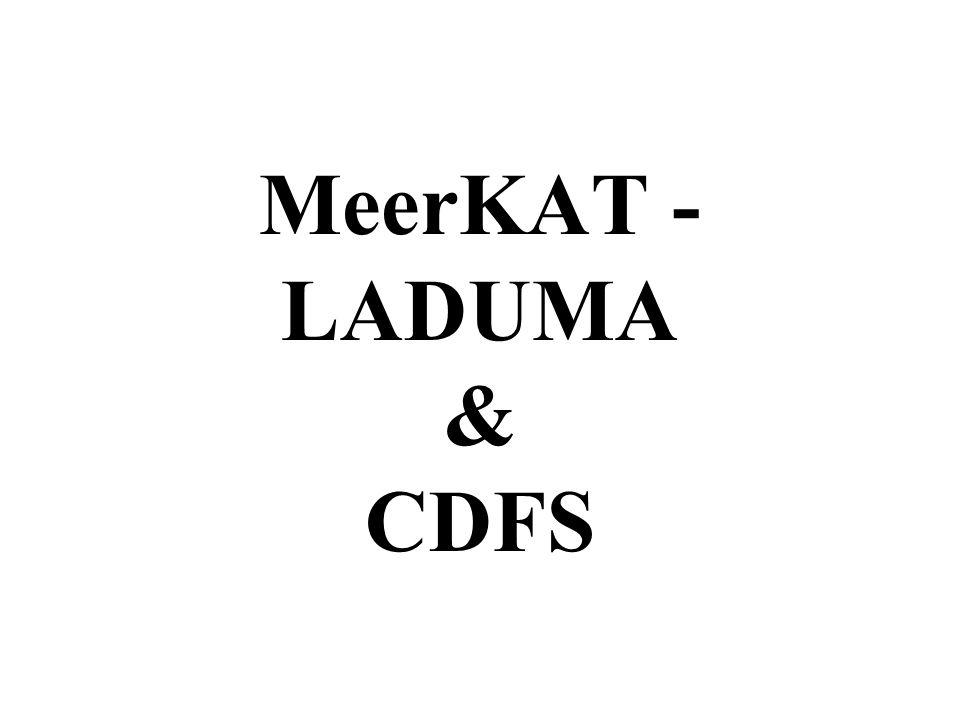 MeerKAT - LADUMA & CDFS