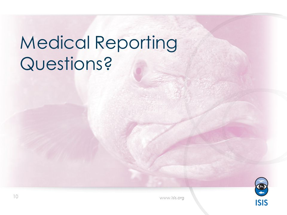 10 www.isis.org Medical Reporting Questions?