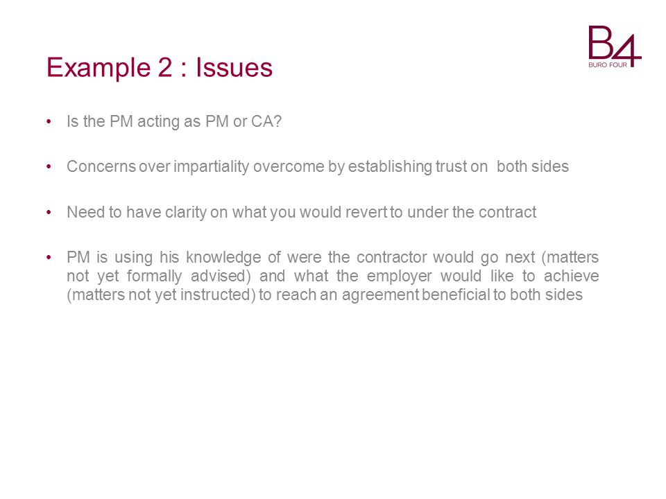 Example 2 : Issues Is the PM acting as PM or CA.