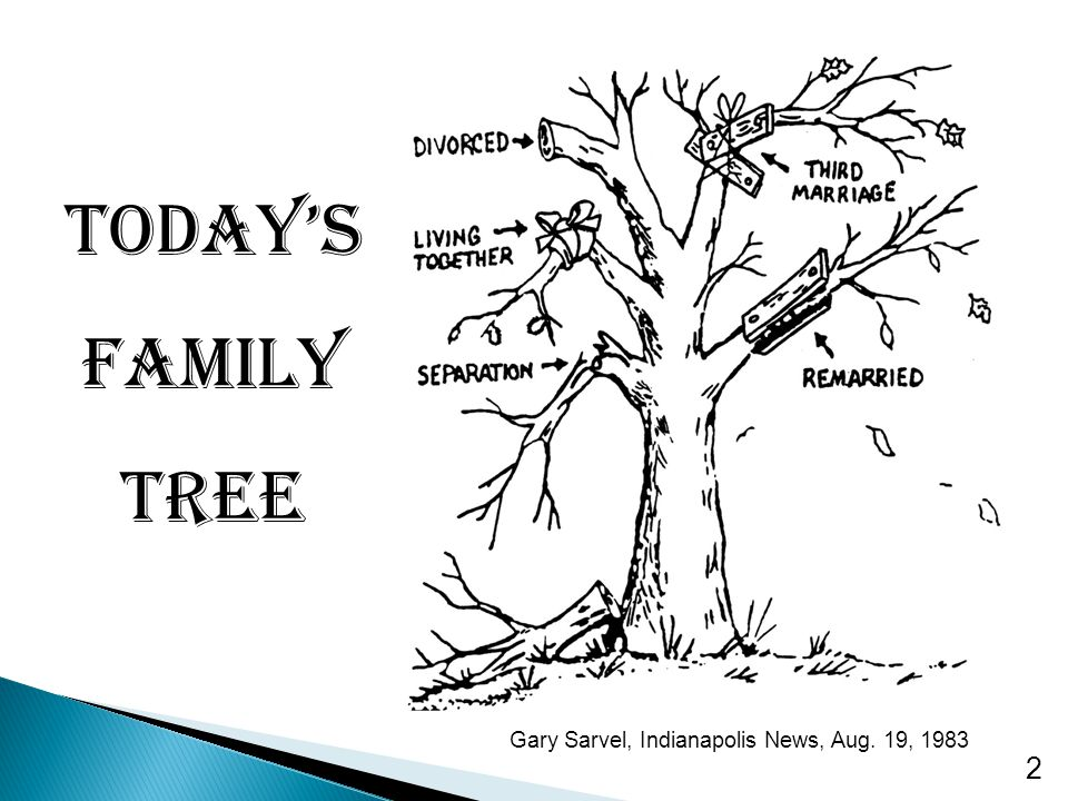 2 Today's Family Tree Gary Sarvel, Indianapolis News, Aug. 19, 1983