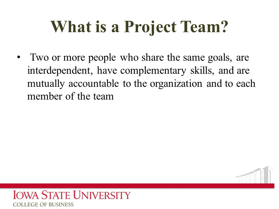 What is a Project Team.