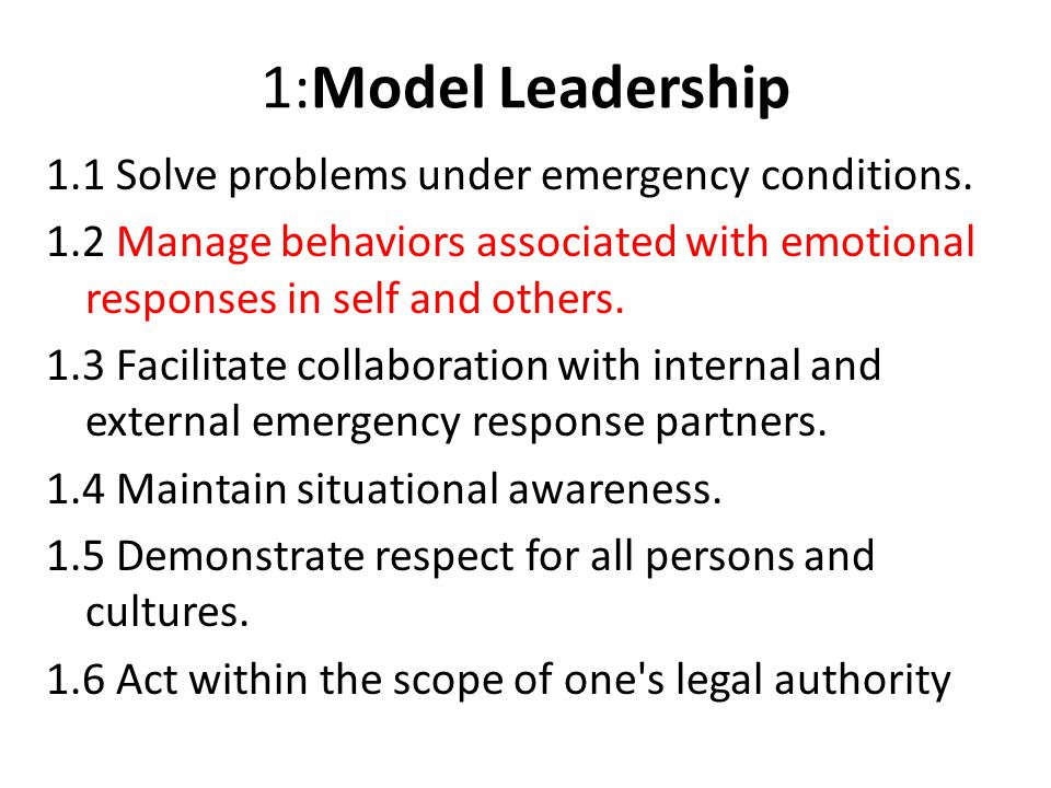 1:Model Leadership 1.1 Solve problems under emergency conditions.
