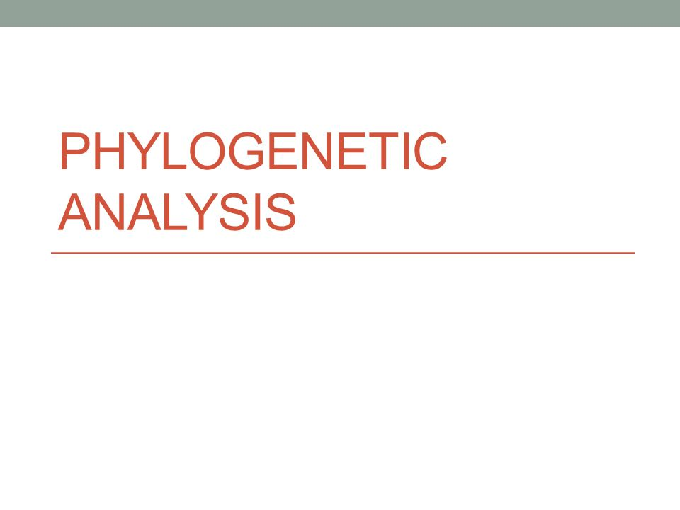 Phylogenetics Phylogenetics is the study of the evolutionary history of living organisms using treelike diagrams to represent pedigrees of these organisms.