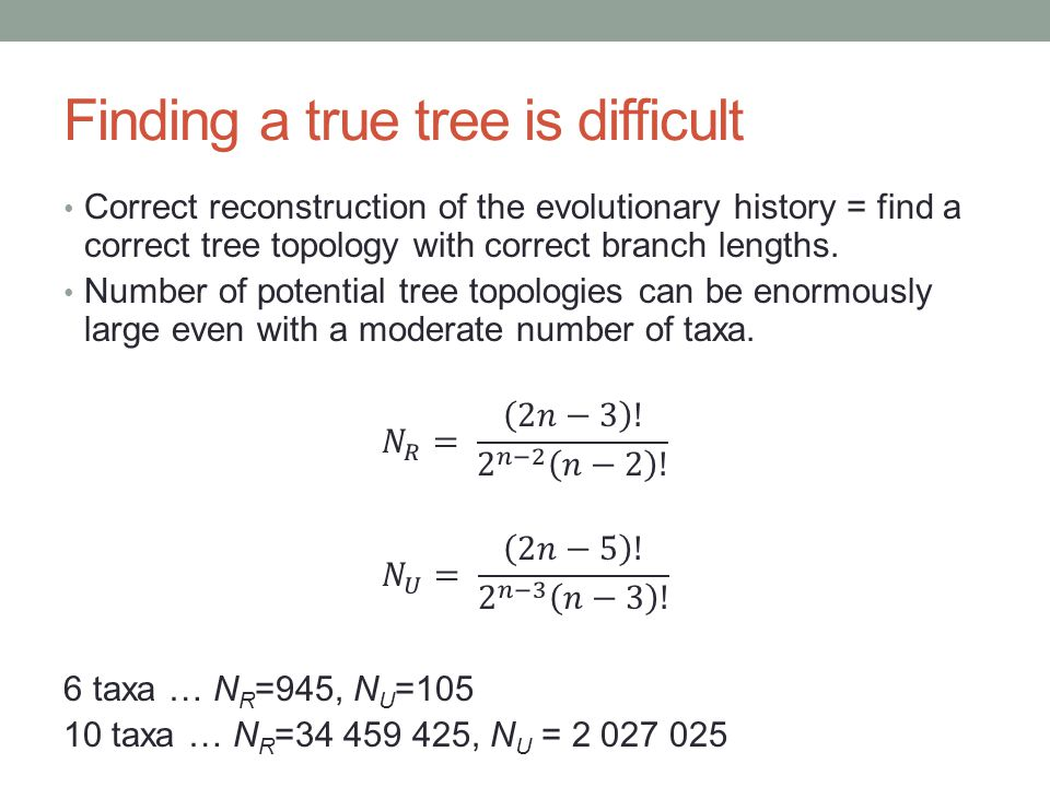 Finding a true tree is difficult