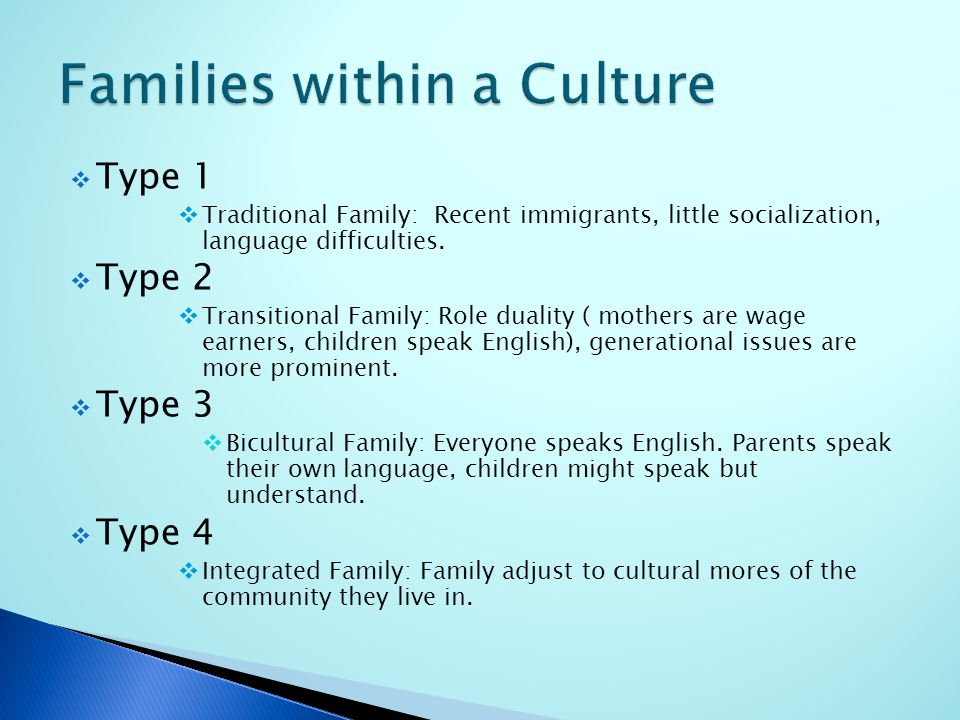  Type 1  Traditional Family: Recent immigrants, little socialization, language difficulties.