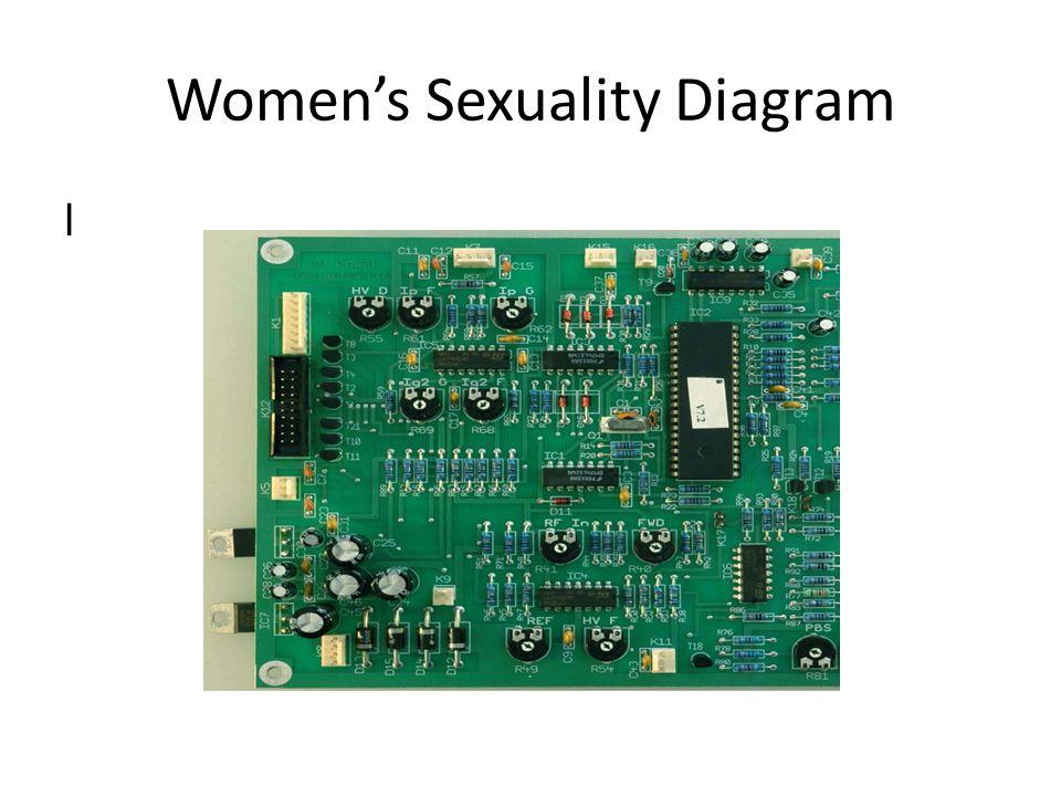 Women's Sexuality Diagram l