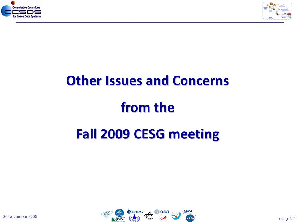 cesg-134 04 November 2009 Other Issues and Concerns from the Fall 2009 CESG meeting