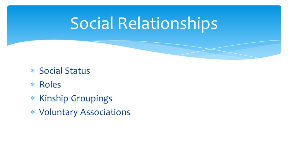  Social Status  Roles  Kinship Groupings  Voluntary Associations Social Relationships