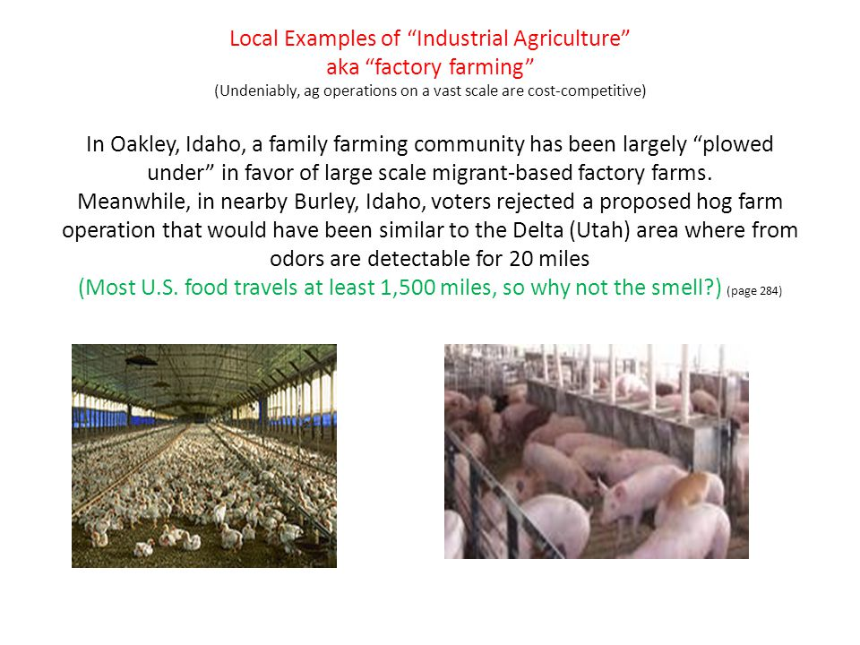 """Local Examples of """"Industrial Agriculture"""" aka """"factory farming"""" (Undeniably, ag operations on a vast scale are cost-competitive) In Oakley, Idaho, a"""