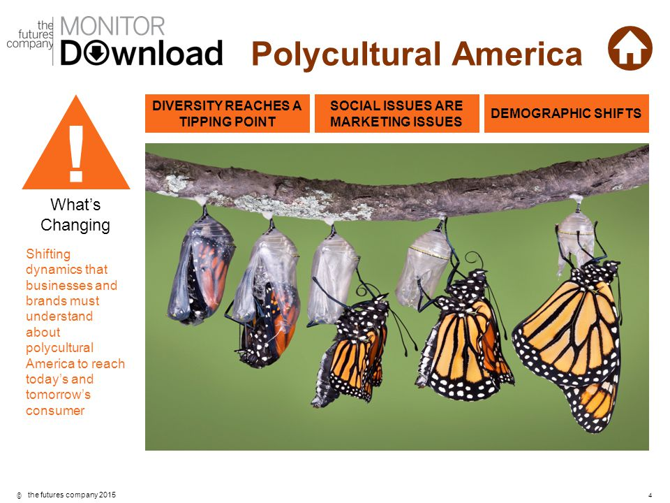 ©4 the futures company 2015 Polycultural America What's Changing Shifting dynamics that businesses and brands must understand about polycultural Ameri