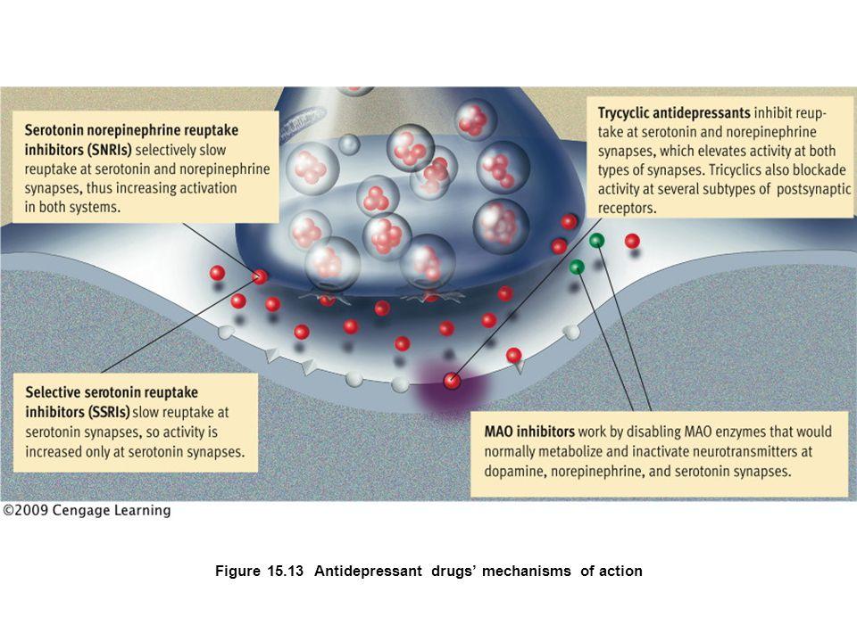 Figure 15.13 Antidepressant drugs' mechanisms of action