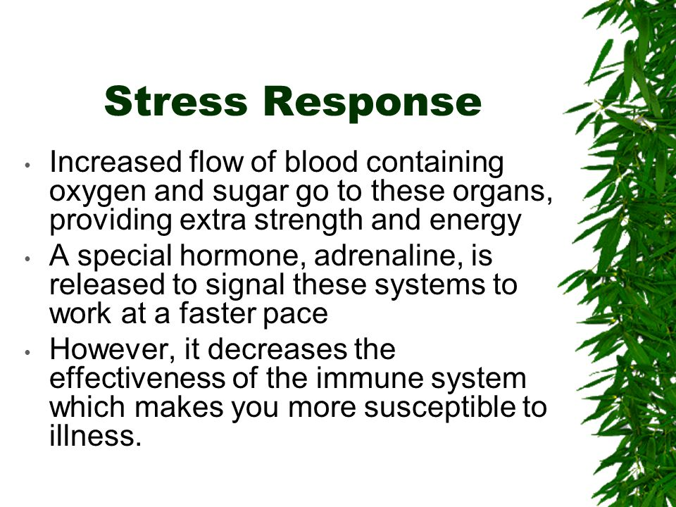 Stress Response Increased flow of blood containing oxygen and sugar go to these organs, providing extra strength and energy A special hormone, adrenaline, is released to signal these systems to work at a faster pace However, it decreases the effectiveness of the immune system which makes you more susceptible to illness.