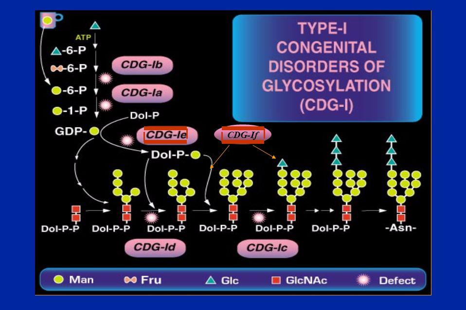 CDG-If