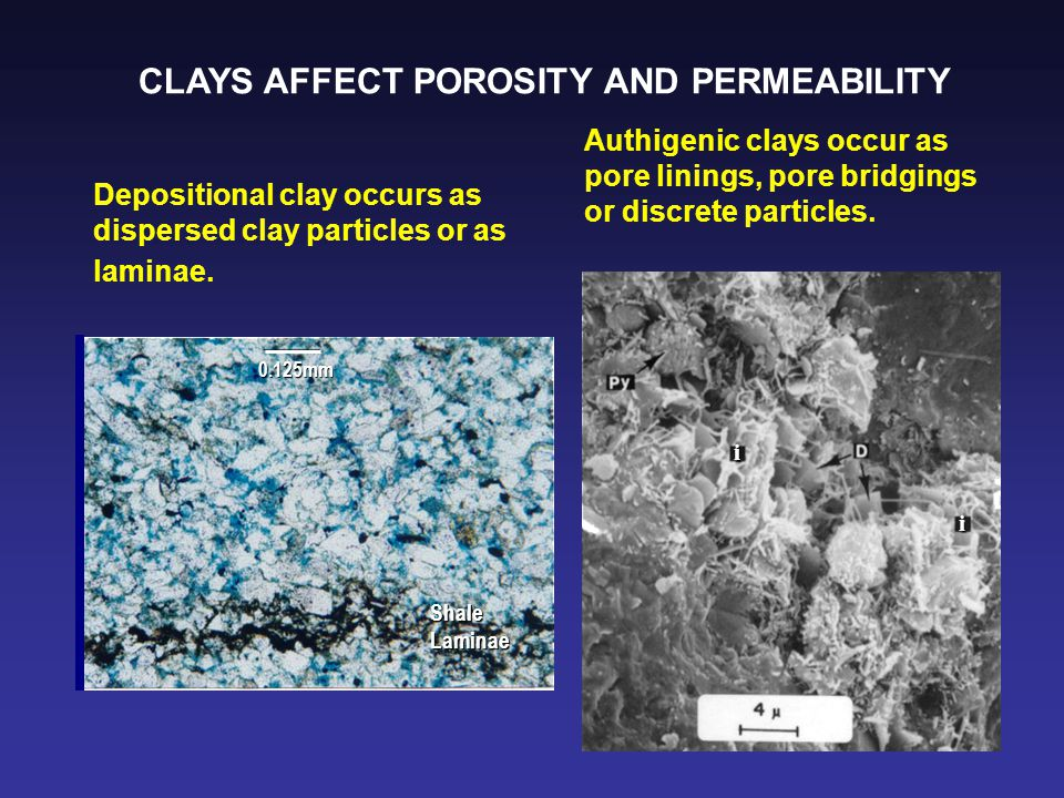 i i Depositional clay occurs as dispersed clay particles or as laminae. 0.125mm ShaleLaminae Authigenic clays occur as pore linings, pore bridgings or