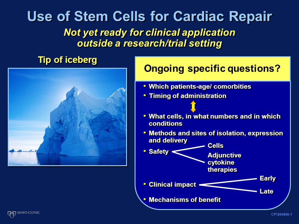 Use of Stem Cells for Cardiac Repair Tip of iceberg Ongoing specific questions.