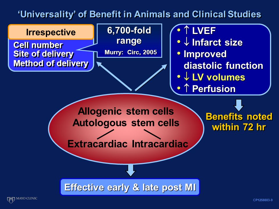 Irrespective Cell number 'Universality' of Benefit in Animals and Clinical Studies Benefits noted within 72 hr Effective early & late post MI Allogenic stem cells Autologous stem cells ExtracardiacIntracardiac  LVEF  LVEF  Infarct size  Infarct size Improved diastolic function Improved diastolic function  LV volumes  LV volumes  Perfusion  Perfusion 6,700-fold range Murry: Circ, 2005 Method of delivery CP1256603-9 Site of delivery