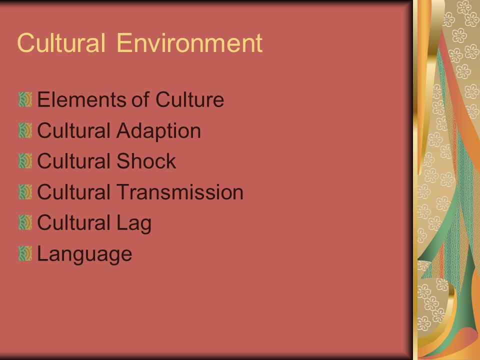 Cultural Environment Elements of Culture Cultural Adaption Cultural Shock Cultural Transmission Cultural Lag Language