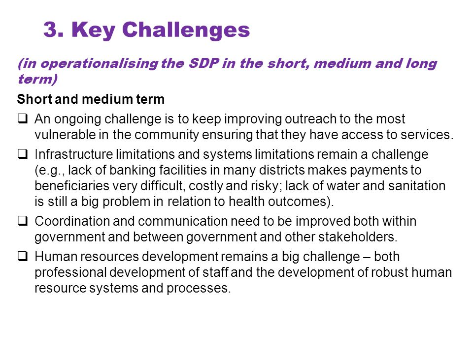 4.The Way Forward How will Lead Ministries well-coordinate the members of Strategic Sectors.