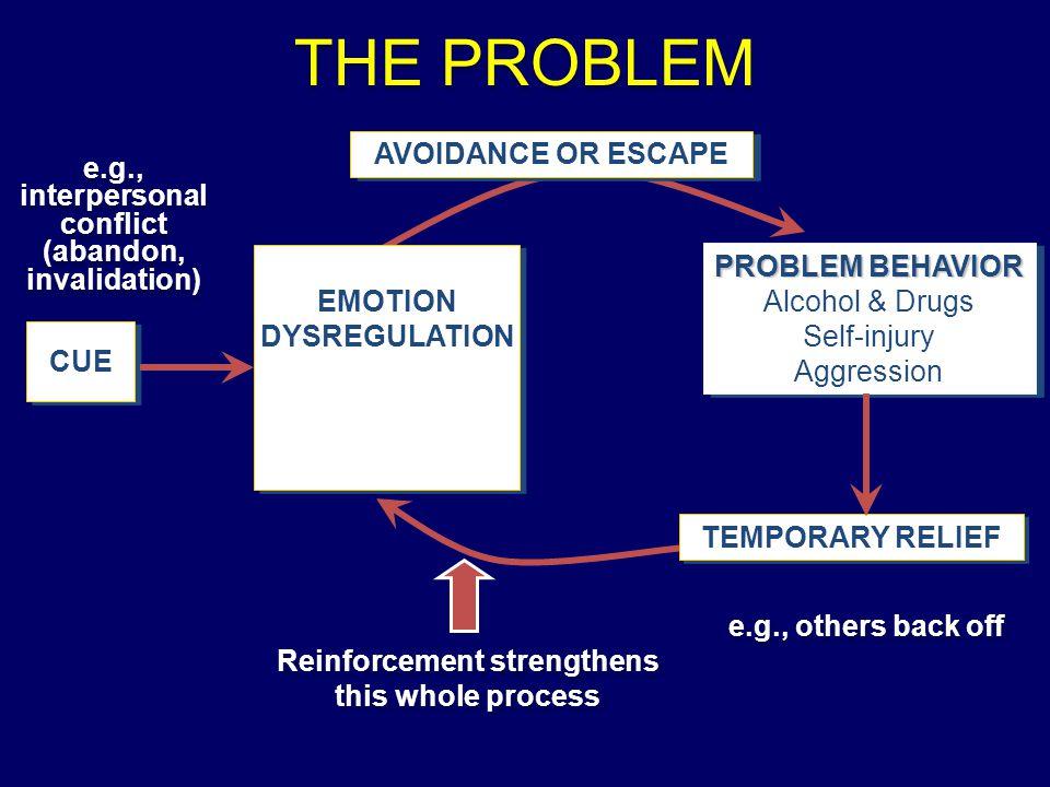 THE PROBLEM CUE EMOTIONDYSREGULATIONEMOTIONDYSREGULATION PROBLEM BEHAVIOR Alcohol & Drugs Self-injury Aggression PROBLEM BEHAVIOR Alcohol & Drugs Self