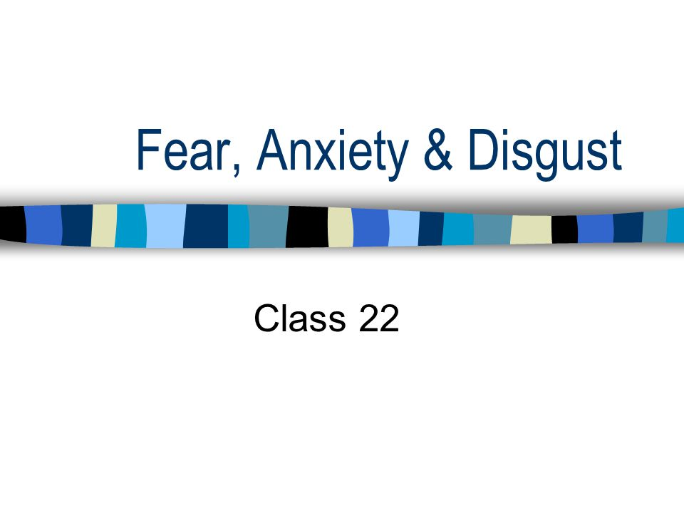 Fear, Anxiety & Disgust Class 22