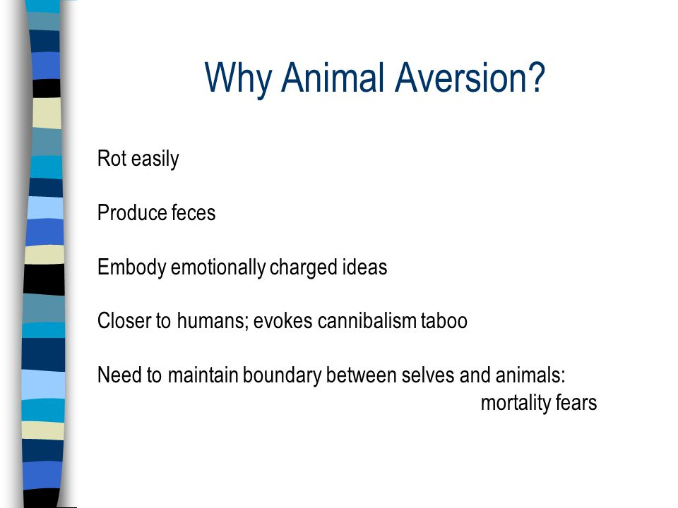 Why Animal Aversion.