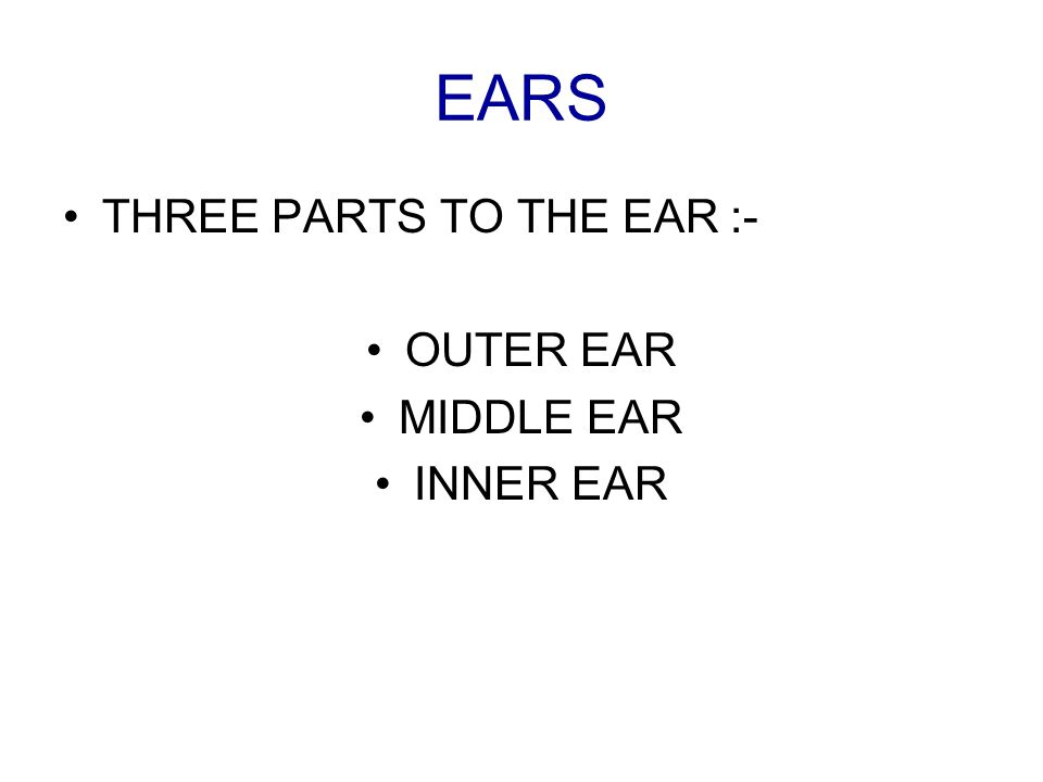 EARS THREE PARTS TO THE EAR :- OUTER EAR MIDDLE EAR INNER EAR