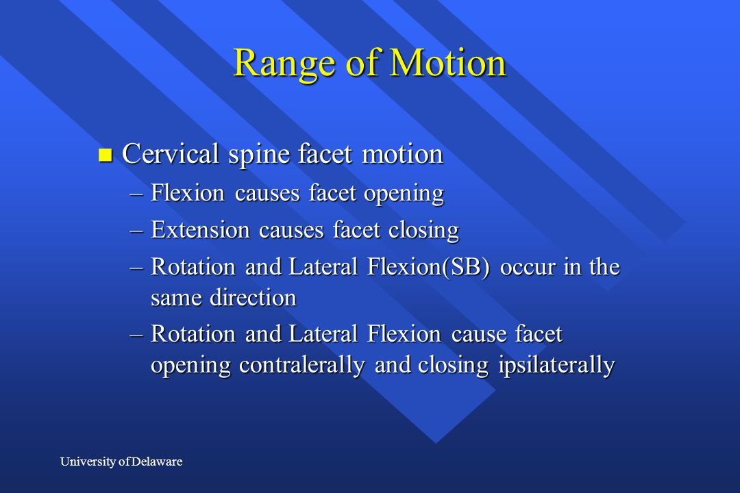 University of Delaware Range of Motion n Cervical spine facet motion –Flexion causes facet opening –Extension causes facet closing –Rotation and Later