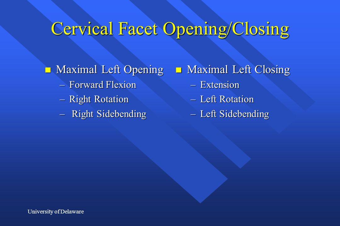 University of Delaware Cervical Facet Opening/Closing n Maximal Left Opening –Forward Flexion –Right Rotation – Right Sidebending n Maximal Left Closi