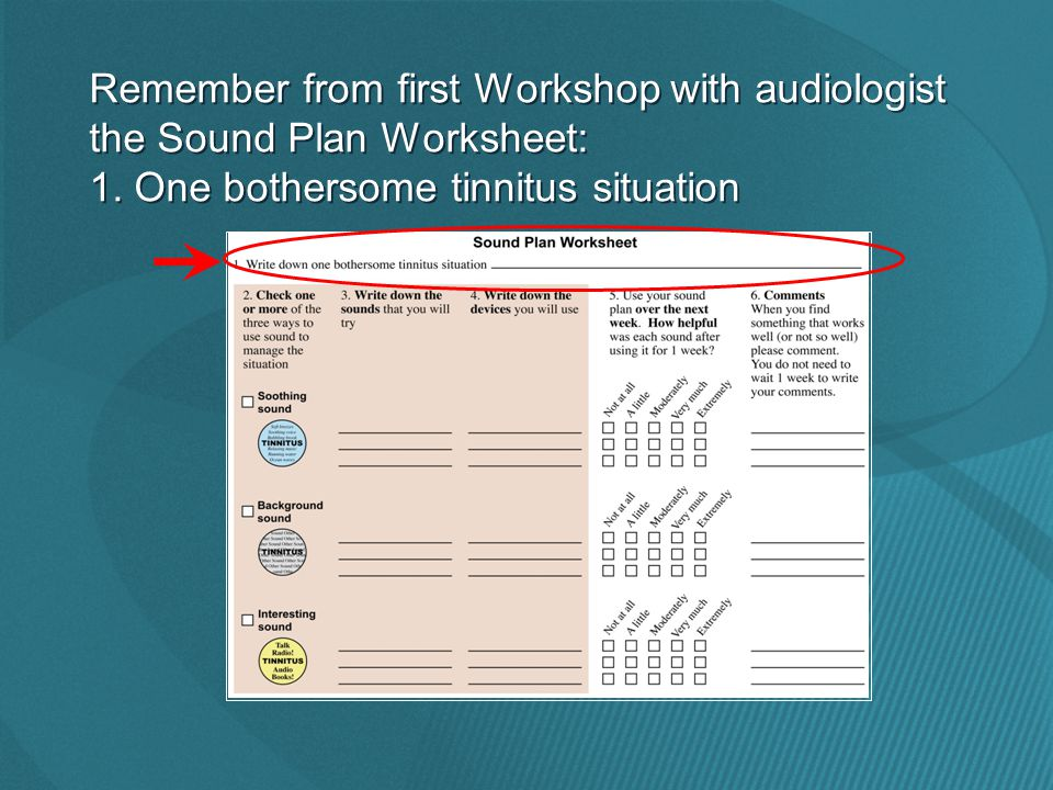 Remember from first Workshop with audiologist the Sound Plan Worksheet: 1.