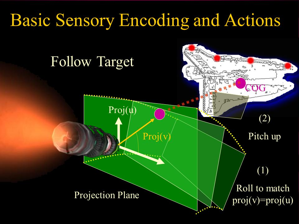 Basic Sensory Encoding and Actions COG Follow Target Projection Plane (1) Roll to match proj(v)=proj(u) (2) Pitch up Proj(v) Proj(u)