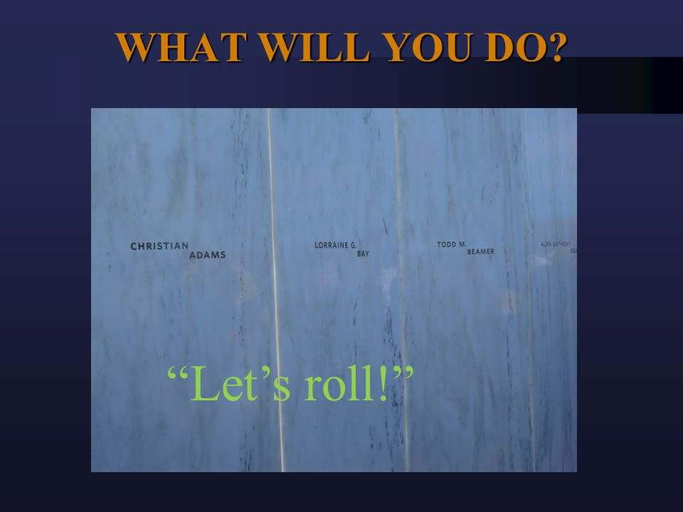 WHAT WILL YOU DO? Let's roll!