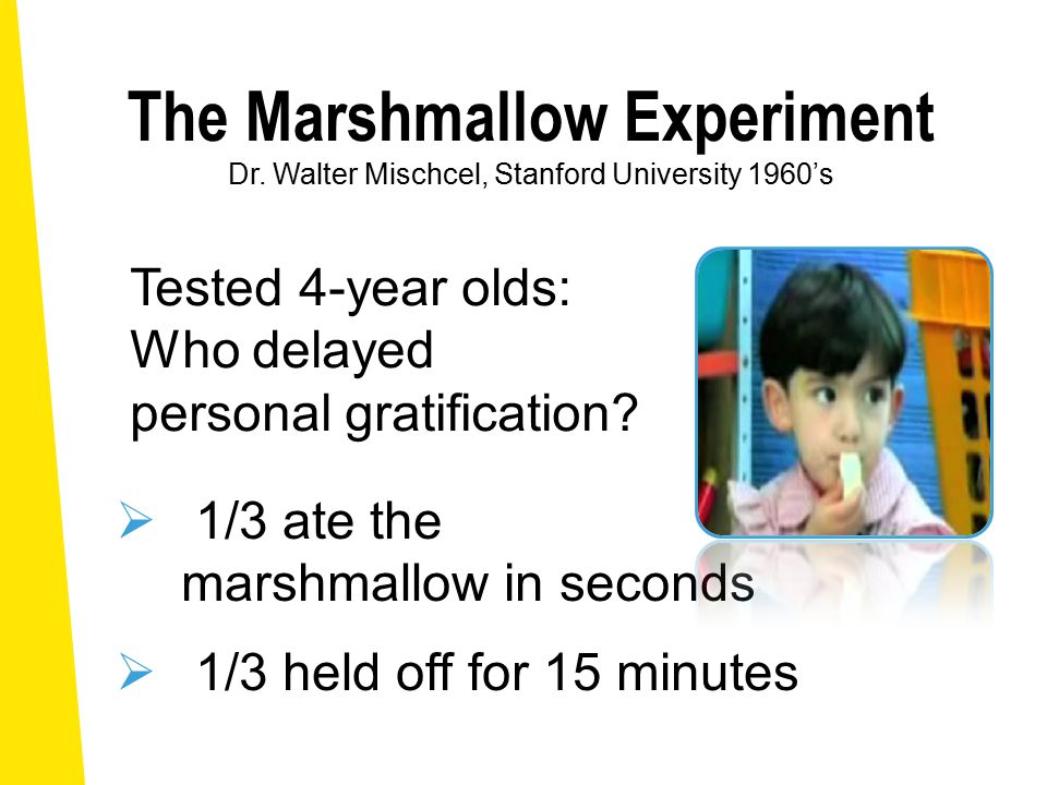 The Marshmallow Experiment Dr.