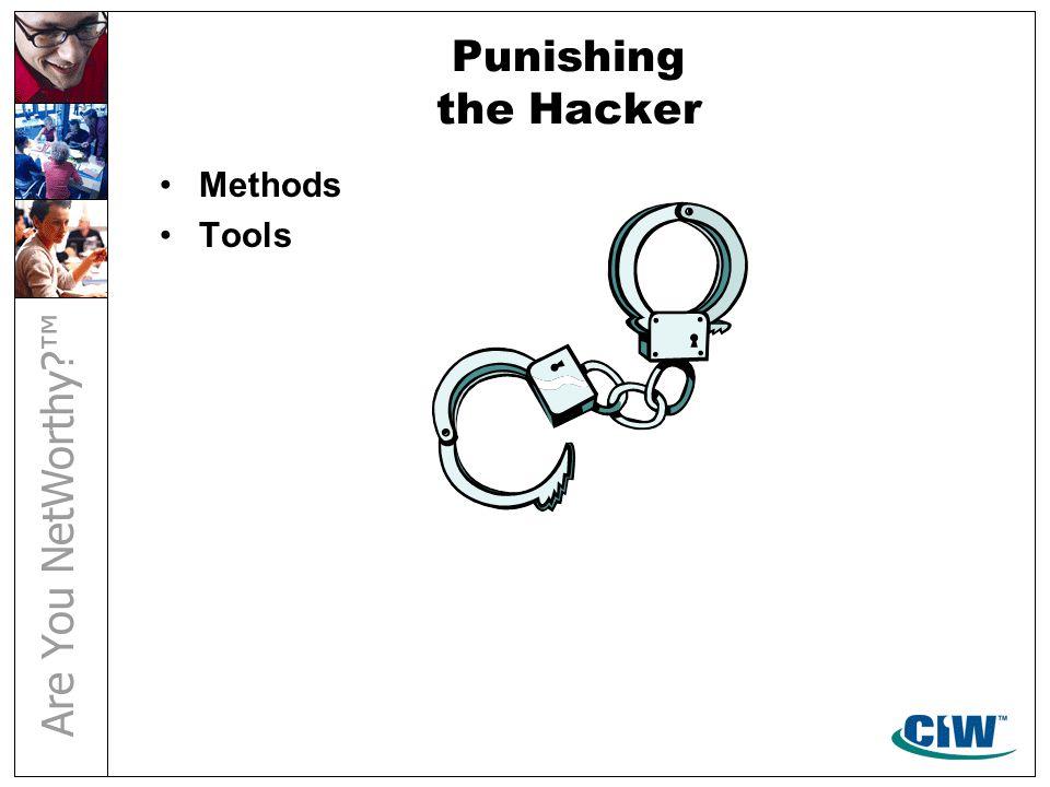Punishing the Hacker Methods Tools