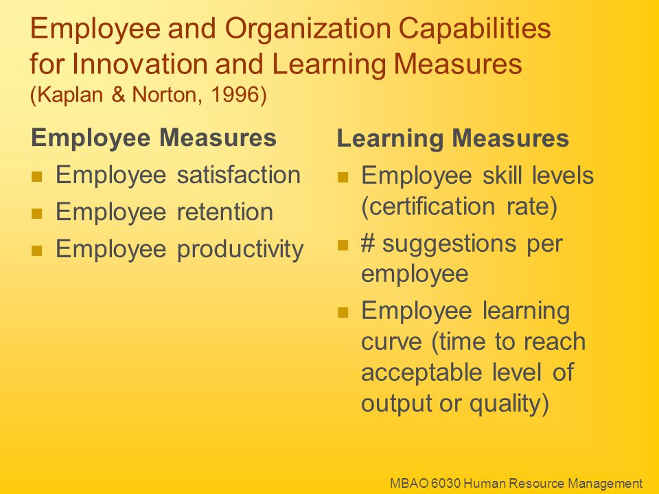 MBAO 6030 Human Resource Management Employee and Organization Capabilities for Innovation and Learning Measures (Kaplan & Norton, 1996) Learning Measures Employee skill levels (certification rate) # suggestions per employee Employee learning curve (time to reach acceptable level of output or quality) Employee Measures Employee satisfaction Employee retention Employee productivity