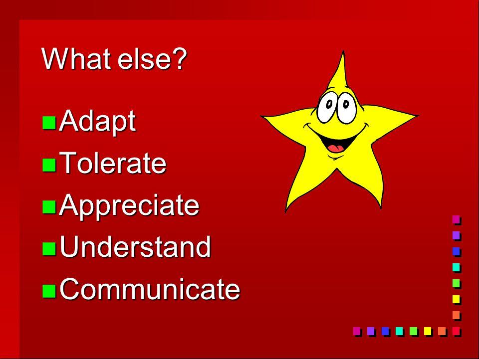 What else? n Adapt n Tolerate n Appreciate n Understand n Communicate