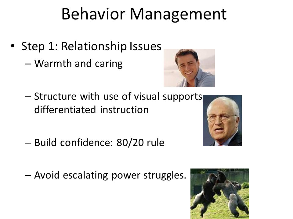 Behavior Management Step 1: Relationship Issues – Warmth and caring – Structure with use of visual supports, differentiated instruction – Build confid