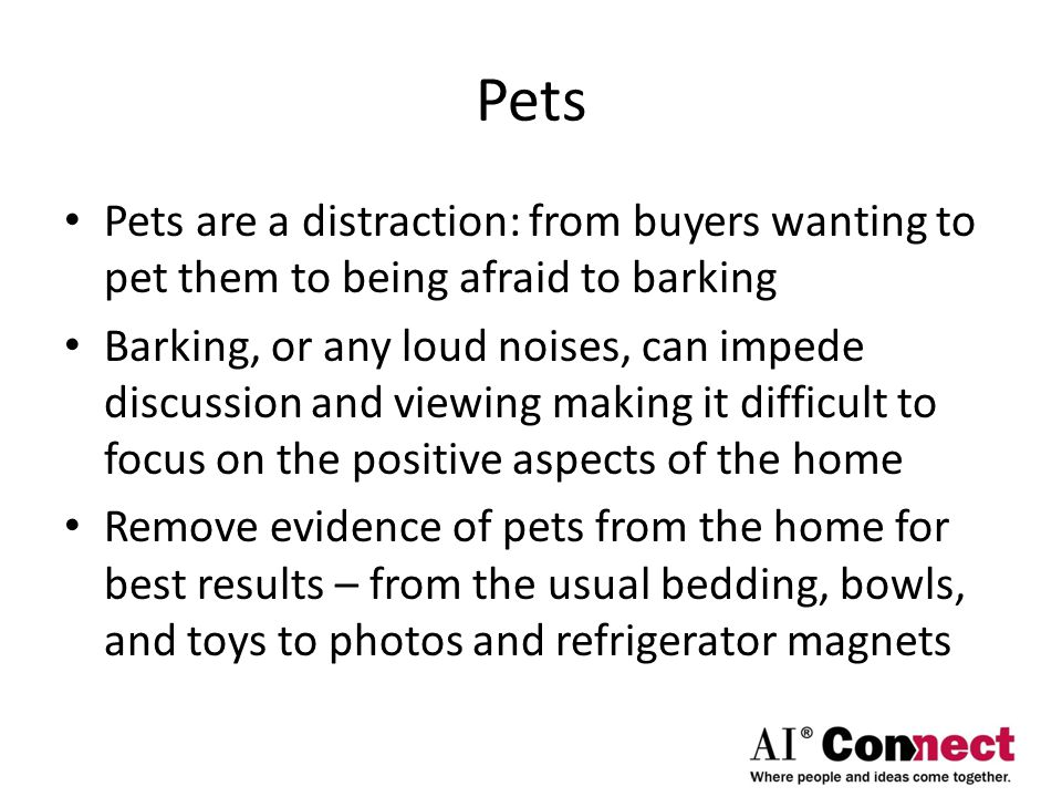 Pets Pets are a distraction: from buyers wanting to pet them to being afraid to barking Barking, or any loud noises, can impede discussion and viewing making it difficult to focus on the positive aspects of the home Remove evidence of pets from the home for best results – from the usual bedding, bowls, and toys to photos and refrigerator magnets