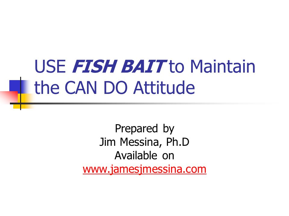 USE FISH BAIT to Maintain the CAN DO Attitude Prepared by Jim Messina, Ph.D Available on www.jamesjmessina.com