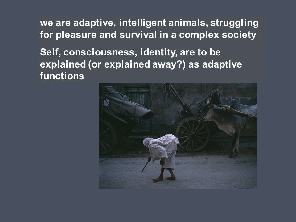 we are adaptive, intelligent animals, struggling for pleasure and survival in a complex society Self, consciousness, identity, are to be explained (or explained away?) as adaptive functions