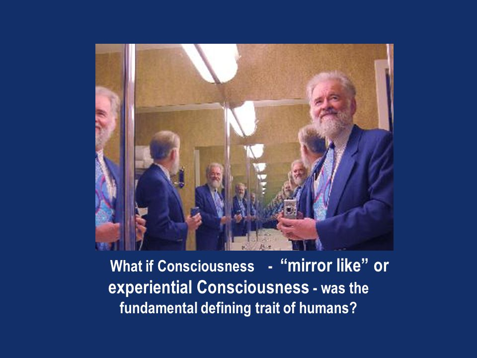 What if Consciousness - mirror like or experiential Consciousness - was the fundamental defining trait of humans?