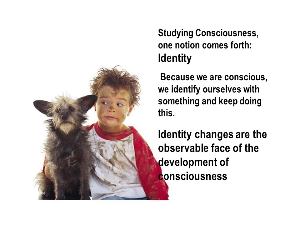 Studying Consciousness, one notion comes forth: Identity Because we are conscious, we identify ourselves with something and keep doing this.