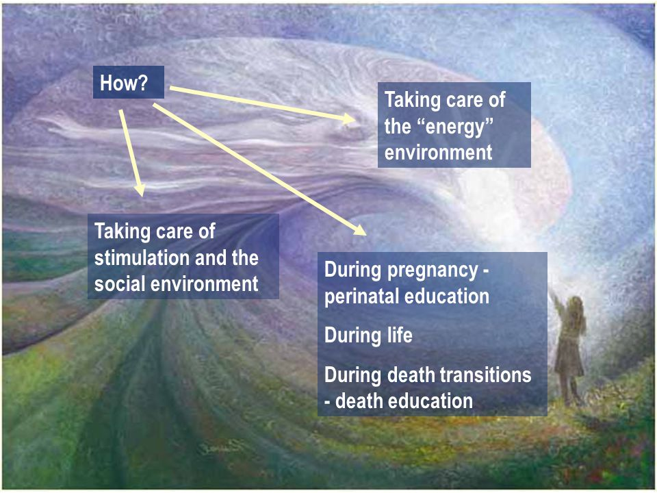 """How? Taking care of stimulation and the social environment Taking care of the """"energy"""" environment During pregnancy - perinatal education During life"""