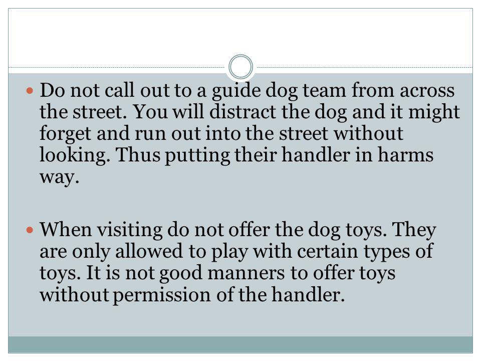 Do not call out to a guide dog team from across the street. You will distract the dog and it might forget and run out into the street without looking.