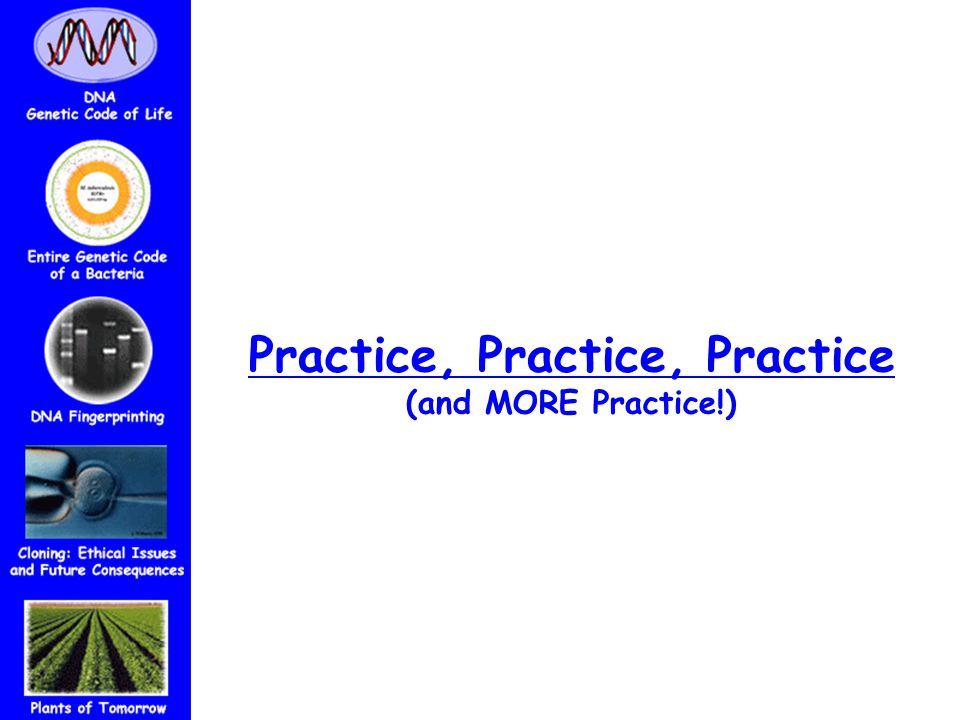 Practice, Practice, Practice (and MORE Practice!)