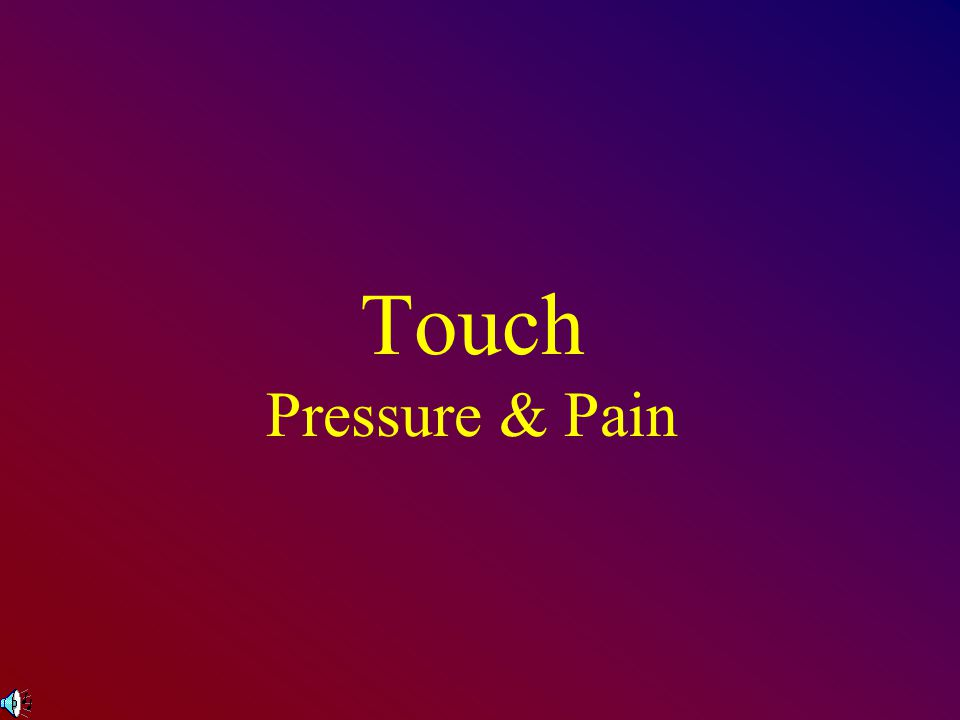 Touch Touch receptors are on the skin Skin is the largest & heaviest organ (20 sq.