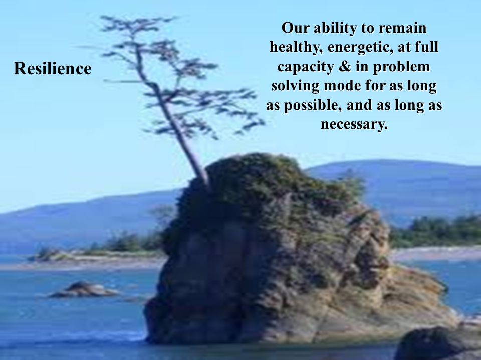 What is RESILIENCE.  What is resilience.  What does it mean in your workplace.