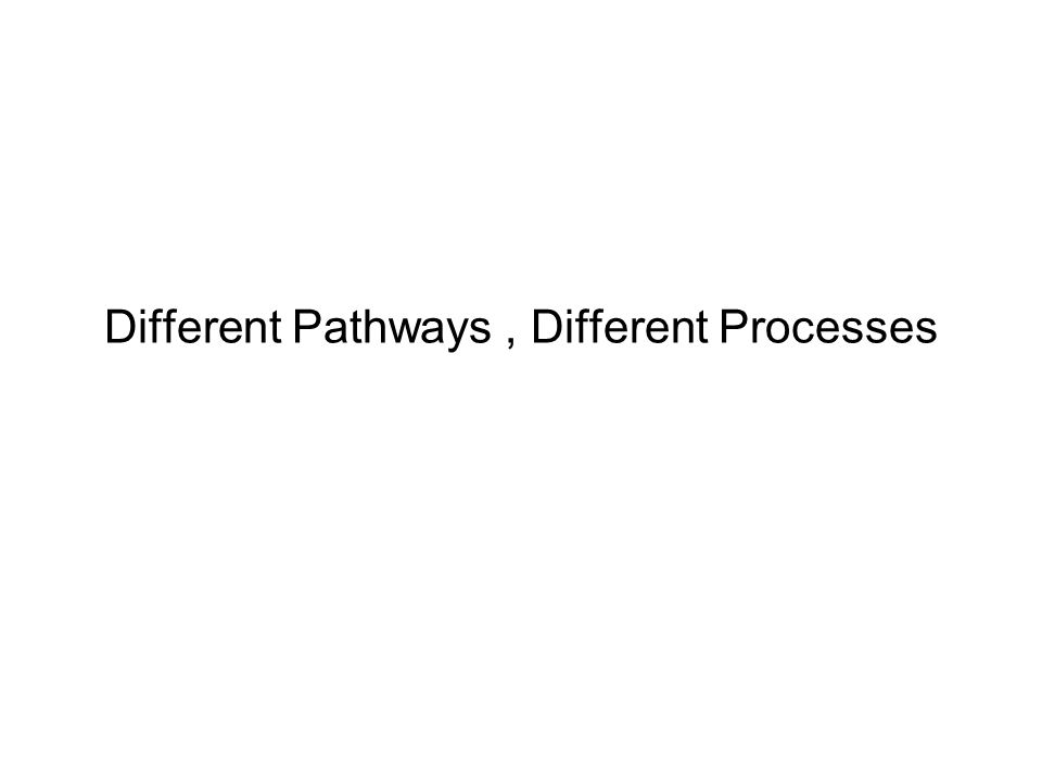 Different Pathways, Different Processes