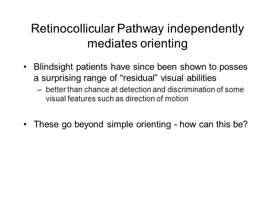 Retinocollicular Pathway independently mediates orienting Blindsight patients have since been shown to posses a surprising range of residual visual abilities –better than chance at detection and discrimination of some visual features such as direction of motion These go beyond simple orienting - how can this be?